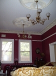 Contrasting Ceiling & Cornice